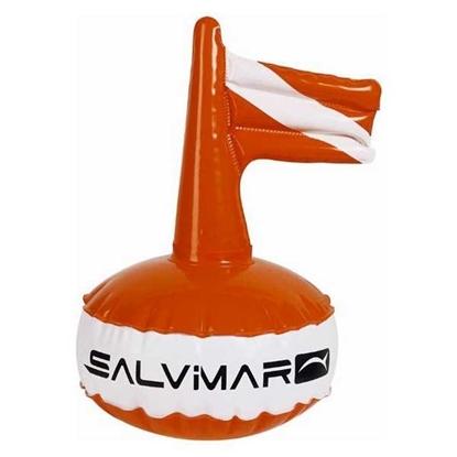 Picture of Salvimar okrogla boja fi30cm PVC